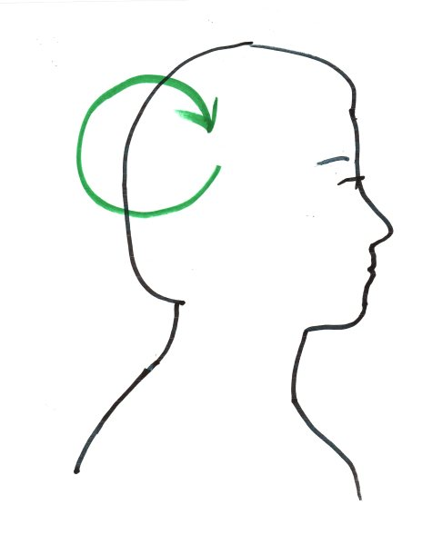 "Image: ""Ra-En Optimizes Brain Waves in the Author,"" by Alice B. Clagett, 13 March 2019, CC BY-SA 4.0, from ""Awakening with Planet Earth,"" https://awakeningwithplanetearth.com ... DESCRIPTION: Outline of a woman's head facing to the viewer's right. Sketched in green is a clockwise circular green arrow circling through the back part of the brain, including the occipital lobe (which is involved in vision) and adjacent portions of the parietal lobe (which processes sensory information and is involved in reasoning and language, among others) and of the temporal lobe (which processes hearing and is involved in speech, memory, emotions, and behavior, among others)."
